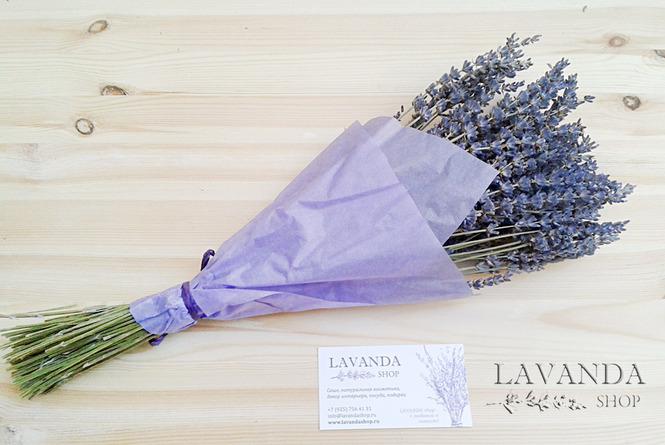 Цветы лаванда купить москва